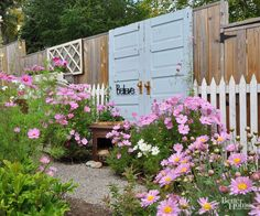 Lush plantings of pink cosmos now soften the fence around Sikorski's free doors. She also put in an invisible trellis by stringing fishing line along the doors and planting clematis to clamber up it. Sections of old, white picket fence complete the look and add charm.