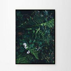 Foto plakat - Dżungla