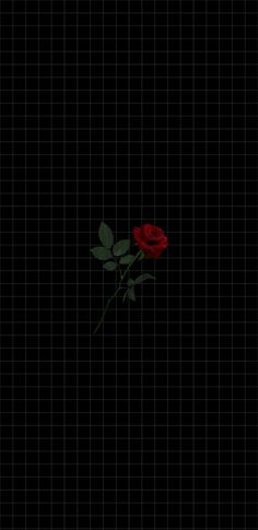 xadrez preto rosa vermelha in 2020 Marvel Phone Wallpaper, Black Phone Wallpaper, Mood Wallpaper, Iphone Background Wallpaper, Dark Wallpaper, Tumblr Wallpaper, Galaxy Wallpaper, Cartoon Wallpaper, Screen Wallpaper