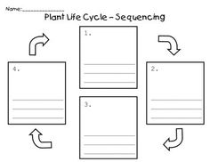 Use this graphic organizer to sequence the stages of a plant's life cycle. There is space for students to draw the picture and then write informati...