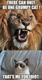 Gummy cat vs Lion Funny Cat Quotes - Grumpy Cat - Ideas of Grumpy Cat - Gummy cat vs Lion Funny Cat Quotes The post Gummy cat vs Lion Funny Cat Quotes appeared first on Cat Gig. Cute Animal Memes, Funny Animal Quotes, Animal Jokes, Cute Funny Animals, Cute Baby Animals, Funny Cute, Stupid Funny, Hilarious, Grumpy Cat Quotes