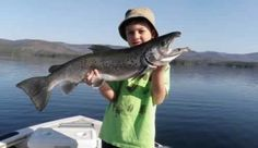Freshwater Fishing   New Hampshire Fish and Game Department