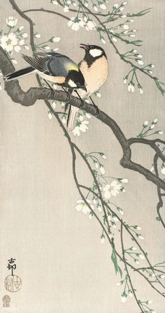 Free Public Domain | www.rawpixel.com | Tits on Cherry Branch (1900-1910) by Ohara Koson (1877-1945)