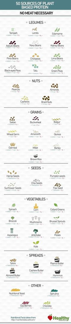 Looking for plant based protein sources ? Check out this awesome infographic that lists 50 meat-free foods stuffed to the brim with protein. Going Vegetarian, Going Vegan, Vegan Vegetarian, Vegetarian Recipes, Vegan Meals, Vegan Dishes, Vegetable Recipes, Vegan Food, Protein Meats