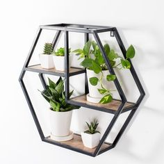 A stylish twist to a shelf, Halliday accentuates your space with its innovative hexagonal design.Hexagonal frame and three-tier structure fulfills a world of wall storage needs.Let decor speak volumes while sitting beautifully in Halliday. Solid Wood Shelves, Wood Floating Shelves, Metal Shelves, Geometric Shelves, Geometric Decor, Wall Shelf Decor, Wood Wall Shelf, Wood And Metal, Metal Walls
