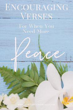 5 Powerful Scriptures on peace that you can pray in the midst of chaos and all of life's stresses! There is power in praying scripture! Christian Women, Christian Quotes, Christian Living, Christian Life, Prayer For Peace, God Prayer, Scripture Verses, Scriptures, Verses About Peace