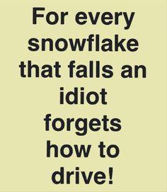 Kentucky winters...