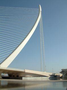 Very Cool Bridge! Ciudad de las Artes. Valencia. Santiago Calatrava
