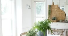 A blog about farmhouse style design, country living, home decorating, family and parties. Farmhouse Style Dining Table, Country Living, Greenery, Dining Room, Parties, Decorating, Chair, Blog, Fashion Design