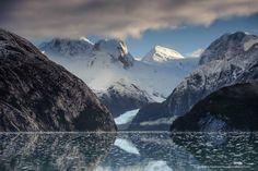 patagonia wildlife | Patagonia landscape and wildlife photography