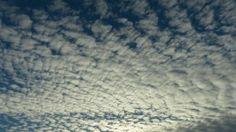 Buttermilk Sky