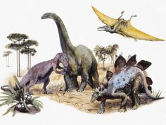 Close-Up of a Painting of Dinosaurs