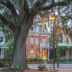 Savannah Georgie - notre airbnb                                                                                                                                                                                 Plus