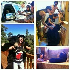 So, erm.. Vic wrestled a bear once, Pierce the veil taught the bear how to drive, that lucky bear took a bath with Tony, and the bear partied waaaay to hard with the Mexicore kings!!