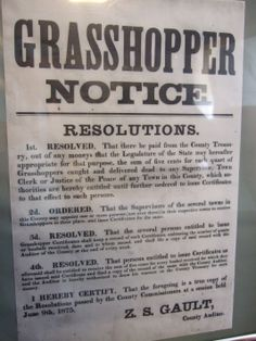 Grasshopper Bounty Notice from the time the Ingalls family suffered their losses.