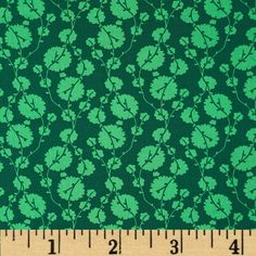 Designed by Amy Butler for Westminster/Rowan, this cotton print is perfect for quilting, apparel and home decor accents. Colors include shades of green. Amy Butler Fabric, Cotton Blossom, Shades Of Green, True Colors, Accent Decor, Fabric Design, Grass, Projects To Try, Crafty