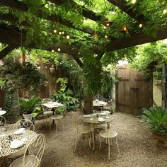 These Are the Ten Best Restaurant Patios, Rooftops, and Outdoor Dining Experiences in NYC - different direction Restaurant Design, Outdoor Restaurant, Design Hotel, Outdoor Cafe, Outdoor Dining, Outdoor Spaces, Outdoor Decor, Outdoor Patios, Outdoor Seating