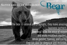 Native American Astrology Animal Totem: Bear