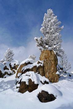 Snow frosting