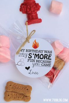Fun and delicious, S'mores Party Favors are sure to birthday party favor box. 60th Birthday Party, Birthday Party Favors, Birthday Ideas, Camping Party Favors, Frozen Birthday, Happy Birthday, Lumberjack Party, Party Favor Tags, Party Entertainment