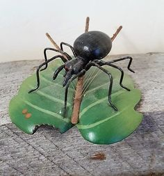 Cute pet black Spider on green leaf with spider web too cute to be afraid of Vintage by its4sale2day on Etsy