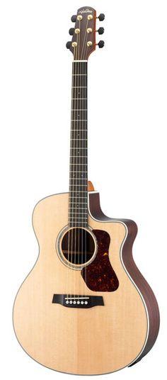 30 best Guitars - Blindworm / Walden images on Pinterest | My music ...