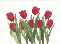 Red Tulip Bunch Original Watercolor by wandazuchowskischick