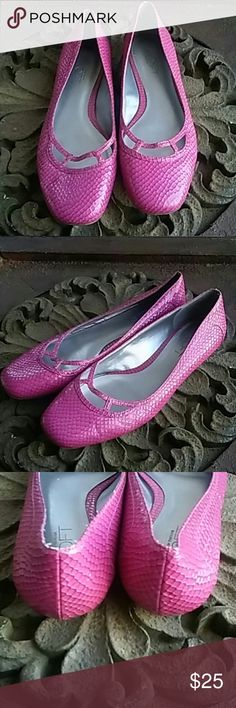 ANN TAYLOR LOFT HOT PINK TEXTURED FLATS SIZE 7 ANN TAYLOR LOFT SUPER CUTE BRIGHT PINK TEXTURED FLATS. THESE SHOES HAVE BEEN PRE-LOVED BUT STILL HAVE MANY MILES TO GO. SO VERY PRETTY WITH SKIRTS, DRESSES, AND JEANS. SIZE 7 Ann Taylor Shoes Flats & Loafers