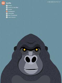 Save the Animals, IUCN Redlist Animals illustration. on Behance