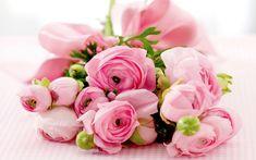 Find out: Best Pink Roses wallpaper on  http://hdpicorner.com/best-pink-roses/