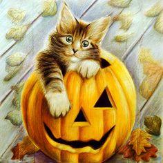 Pictures Cats Pumpkin Halloween Animals Painting Art