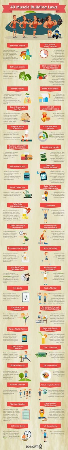 Trading infographic : 40 Muscle Building Laws Favorite Pins