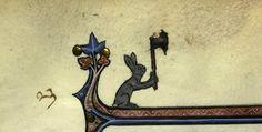 Killer Rabbit bibl. de la Sorbonne
