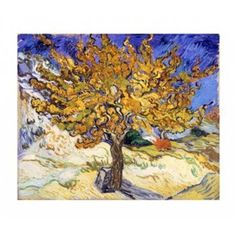 The Mulberry Tree in Autumn c1889 Canvas Art - Vincent Van Gogh (28 x 24)