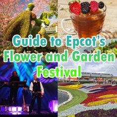 Flower and Garden Festival at Epcot features beautiful topiaries, outdoor kitchens, musical acts, gardening seminars and more. Here's more info and help planning your time there.
