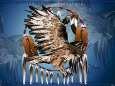 Flying-Hawk-Dreamcatcher-font-b-Native-b-font-font-b-American-b-font-font-b-Indians.jpg (788×594)