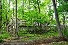 Southeastern PA Hiking: Ridley Creek State Park - Jefford's Greenhouse