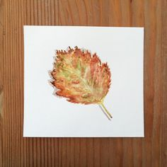 A personal favorite from my Etsy shop https://www.etsy.com/listing/227393173/original-watercolor-painting-autumn-leaf