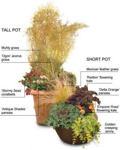 Containers that Keep Kicking into Fall: Pick plants that stand up to frost | Fine Gardening