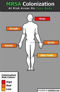 MRSA Colonization - At risk areas on your body.