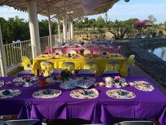 Princess Garden Tea Party