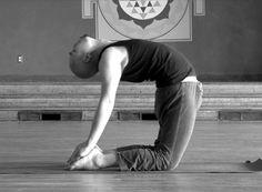 Yoga Pose – Camel Pose from www.yogaxtc.com » Yoga Pose Weekly
