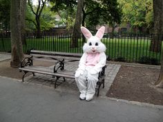 white rabbit. upper west side, nyc.