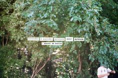 Entender é parede: procure ser árvore. Grande Manoel de Barros!