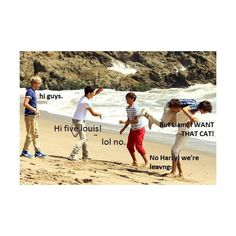 funny 1d | Tumblr ❤ liked on Polyvore