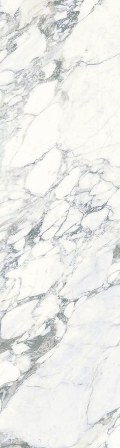 Porcelain Tile | Marble Look Plane Arabescato Vena… photo credit to-GunaI-Y