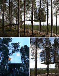 tree hotel sweden - Google Search