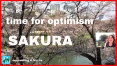 Sakura - Time For Optimism