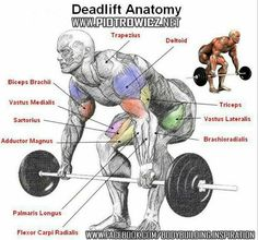 #deadlift #fitness