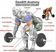 #deadlift #fitness